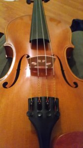 left hand violin01